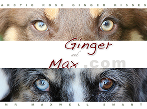 Ginger and Max Website